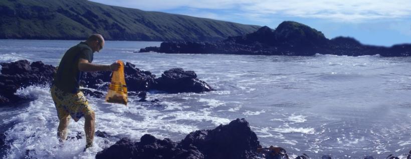 mussels-beach