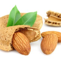Almond Cookies -Keto Friendly